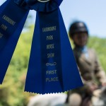 Blue ribbons from Fairmount Park Horse Show