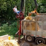 Mushroom farmer picking up manure