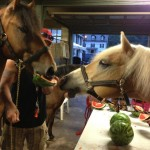 Cofrey and Baxter eat watermelon at a barn party