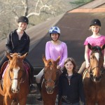 Lesson horses and students